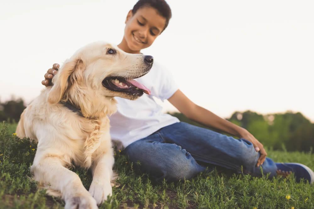 Kid dog program in Colorado